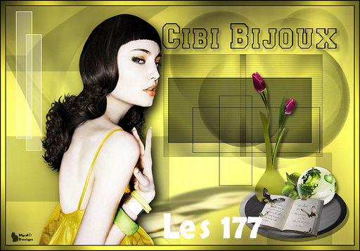 VB Les 177