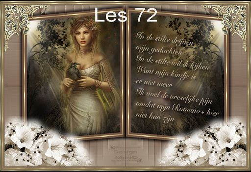 VB Les 72