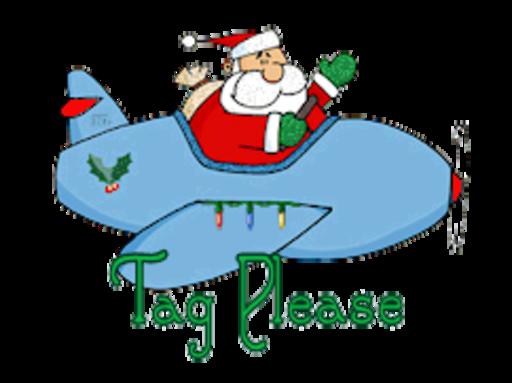 Tag Please - SantaPlane