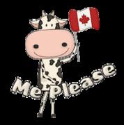 Me Please - CanadaDayCow