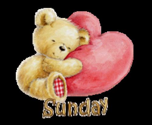 DOTW Sunday - ValentineBear2016