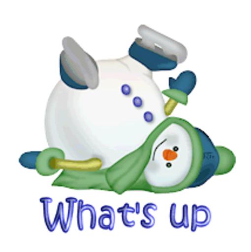 What's up - CuteSnowman1318