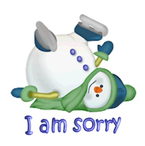 I am sorry - CuteSnowman1318