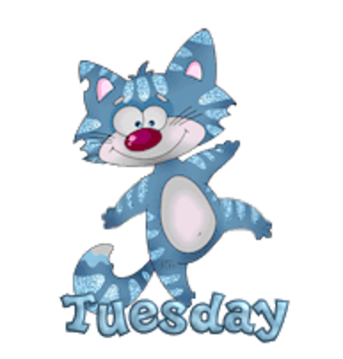 DOTW Tuesday - DancingCat