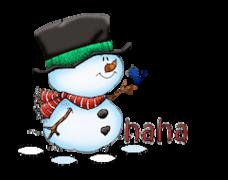 haha - Snowman&Bird