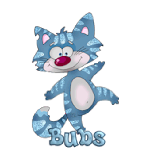 Bubs - DancingCat