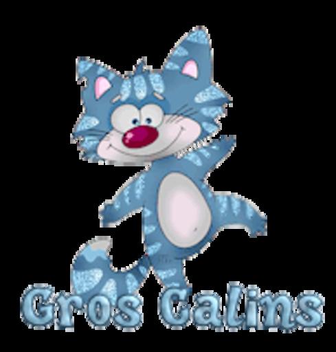 Gros Calins - DancingCat