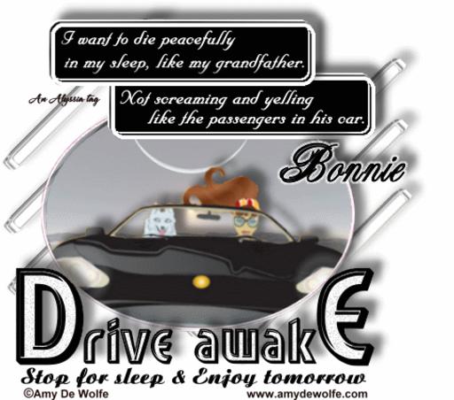 Bonnie DriveAwake AmyDeW Alyssia