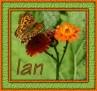 Ian - Butterfly1