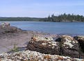 lichen, conglomerate, basalt, water
