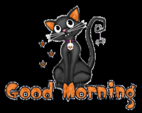 Good Morning - HalloweenKittySitting