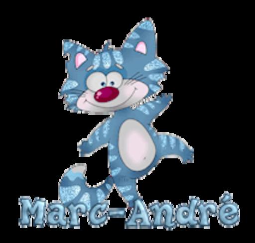 Marc-Andre - DancingCat