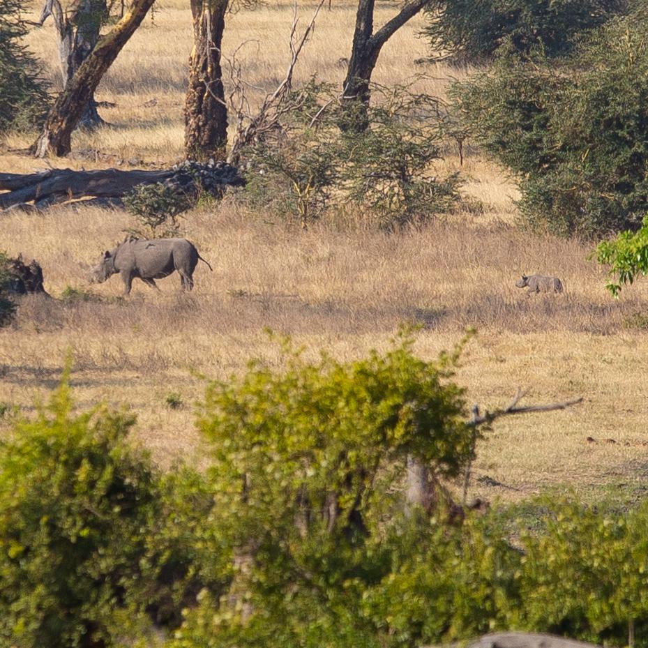 Tanzania058-vi.jpg