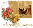 outwalking-sweetdreams