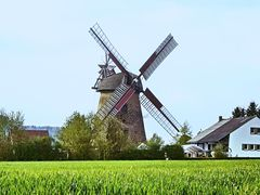 Windmühle Bentorf